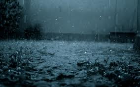 Raindrops are the bravest things in the world because they are never afraid of falling.